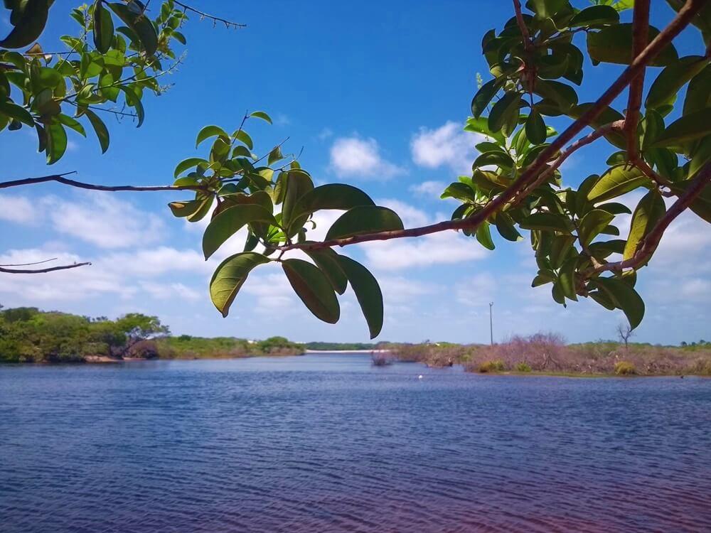 Preá / Playa Parnaíba (Delta do Parnaíba) Traslado (privado)